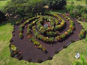 Galaxy-Garden-lomberg