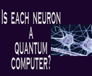 neuron-computer