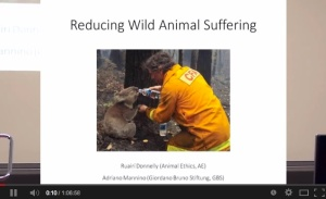 Reducing-Animal-Suffering
