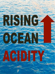 OCEAN-ACIDITY