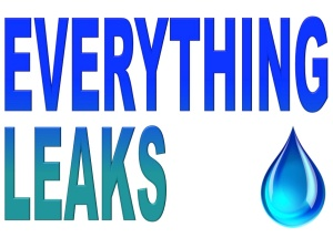 Everything-leaks
