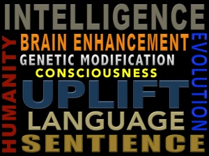 uplift-word-cloud