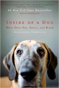 inside-dog